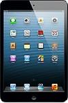 Apple 32 GB iPad Mini Wi-Fi + Cellular - Black & Slate