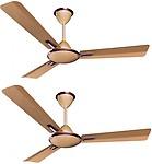 Crompton aura antidust 3 Blade Ceiling Fan(Birken)