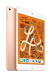 Apple ipad Mini (2019) 256 GB 7.9 inch with Wi-Fi Only (Gold) price in India.