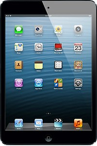 Apple iPad 16GB Mini with Wi-Fi and Cellular (White and Slate) price in India.